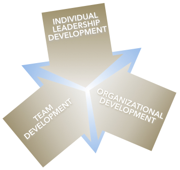 Margaret Holtman, LLC offers Customized Leadership Solutions for Individuals, Teams and Organizations