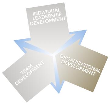 Margaret Holtman, LLC offers Organizational Development