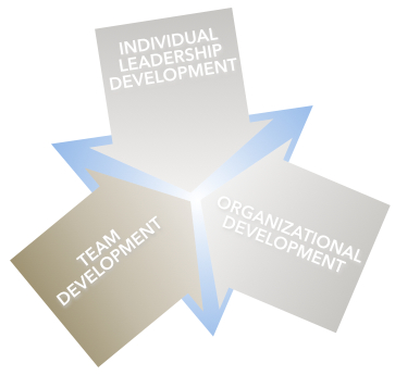 Margaret Holtman, LLC offers Team Development