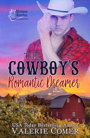 The Cowboy's Romantic Dreamer by Valerie Comer