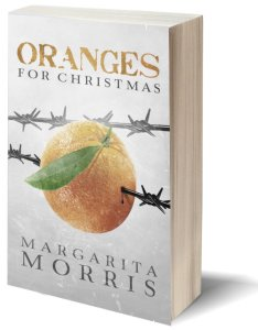 3d book cover oranges