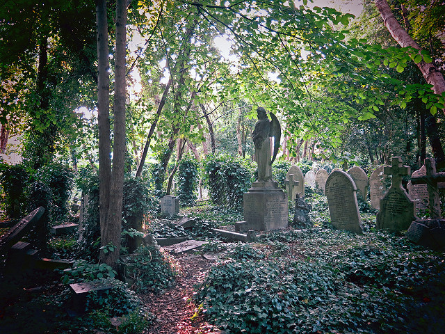 Highgate Cemetery London by Stephen Clarkson