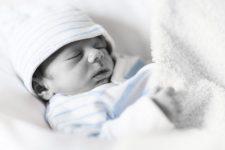 NICU, Babies, Parenting, Preemies, Marge Fenelon