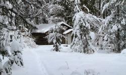 Cabin Fever, Winter, Blizzard, Marge Fenelon