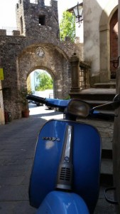 Came across this beauty in Barga by Jeanie Beck