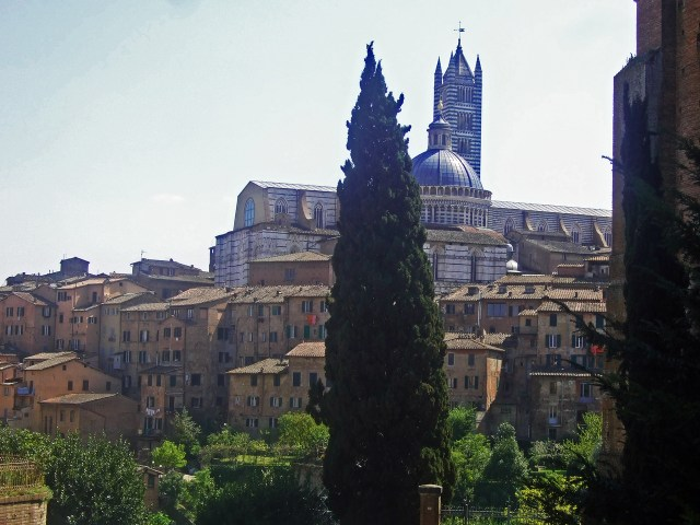 Tuscany Siena Photo by Margie Miklas