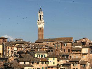 Siena photo by Margie Miklas