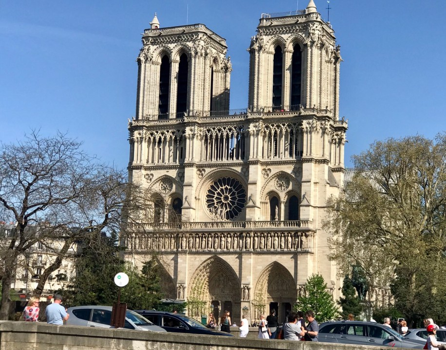 Impressions of Paris Notre Dame Photo by Margie Miklas
