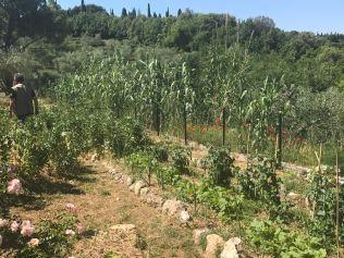 Montestigliano garden