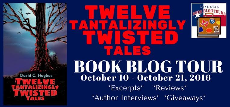 Twelve Tantalizingly Twisted Tales by David C. Hughes