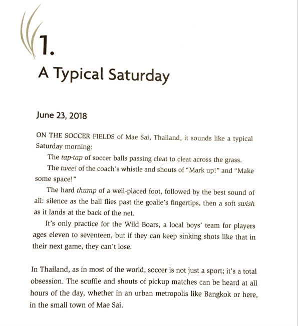 opening paragraphs of a book