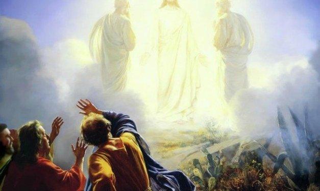 Making Sense of the Transfiguration