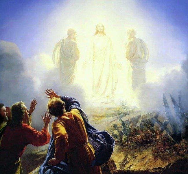 Making Sense of the Tranfiguration