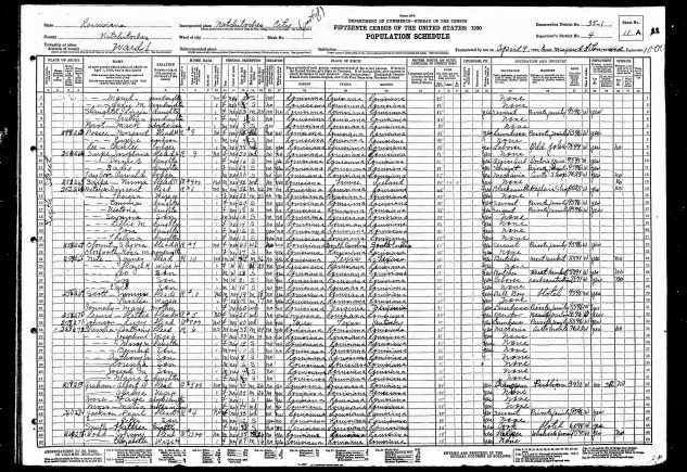 Fay Moses in 1930 census