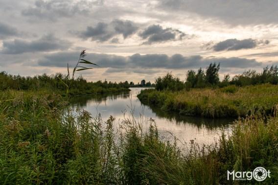 Landschapsfoto van Tiengemeten
