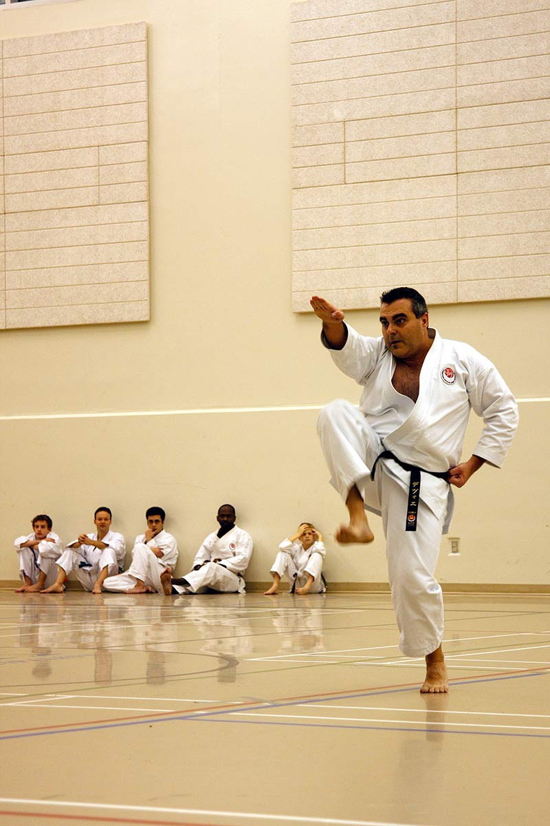 Karate 2010-1