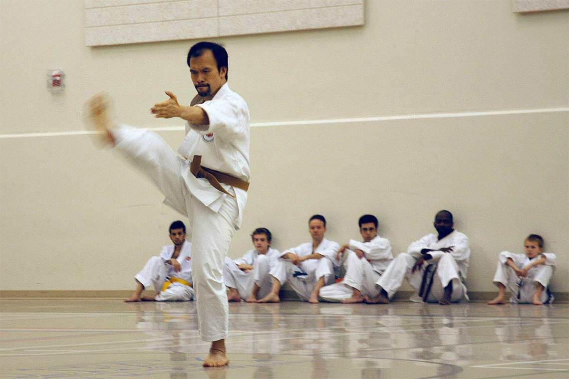 Karate 2010-2