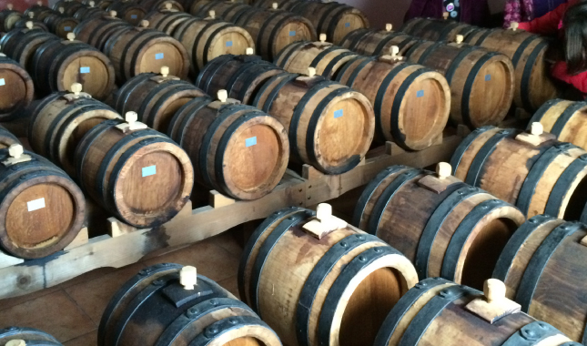 Barrels of wine, Tourism - Itineraries - Margo Wine Routes
