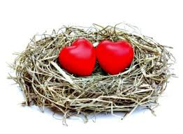Moving My Never Empty Nest