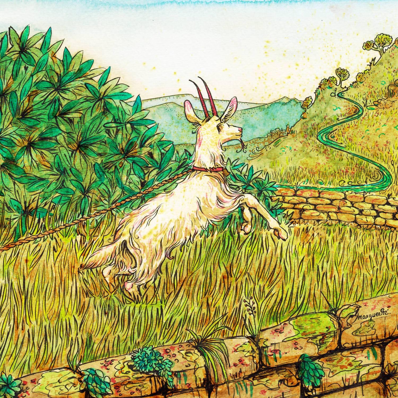 La chèvre de Monsieur Seguin - 1 - illustration