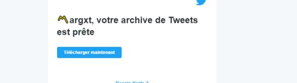 Tutoriel-Twitter-Archive-Eraser-07