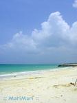 前浜海岸と入道雲