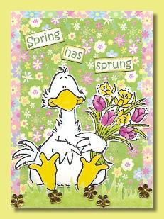 atc-magnolia-spring-has-sprung