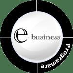 Programare E-business