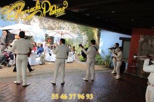 Mariachis para fiestas  Mariachis para fiestas Mariachis para fiestas mariachis para fiestas