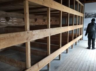 Prosoner bunk beds