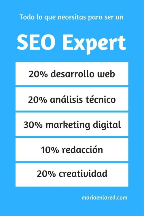 El experto SEO debe cumplir con algunas cualidades como ser un 20% desarrollador web, un 20% técnico analista, un 30% experto en marketing digital, un 10% redactor y un 20% creativo