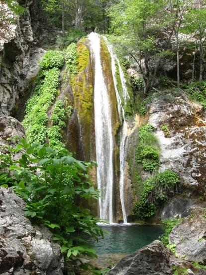Waterfall in the wild