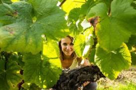 les millesimes de sophie, choix vins, accord mets vins, repas mariage, sommelier, sophie iacono, vignes, caviste