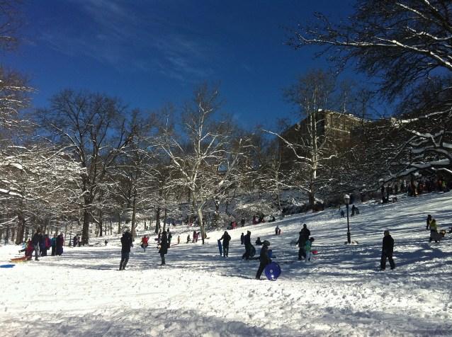 Day 133:2 sledding in the park