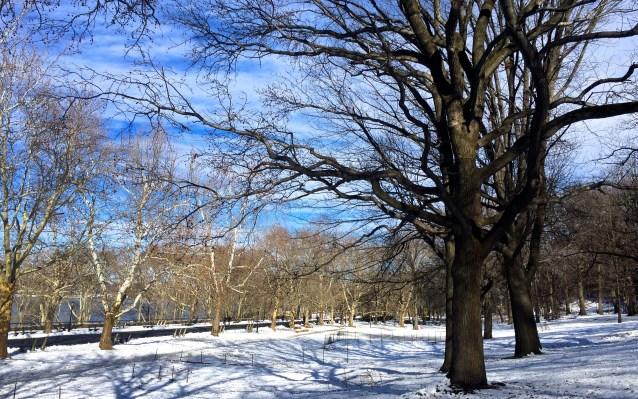 Day 25:4 Riverside Park