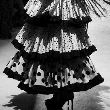 flamenca-1