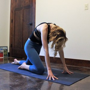 Parallel Knees with Cat Back