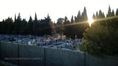 Cementerio de Arles