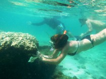 Buceando entre las rocas