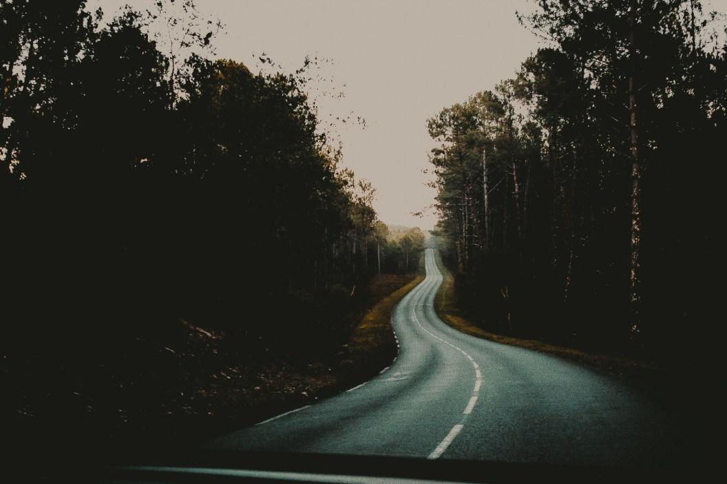 road seignosse (2 of 5)