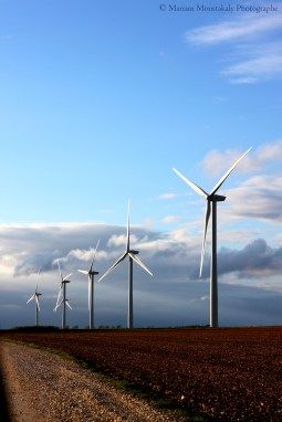 Espagne - Les éoliennes qui dansent