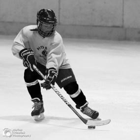 Ice hockey future generation