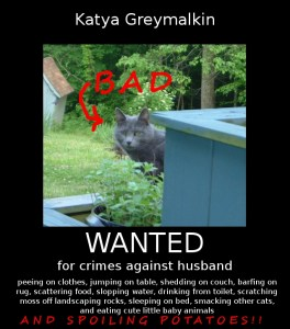 Bad Katya