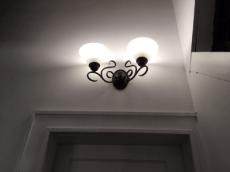 Anudder light for Joey.
