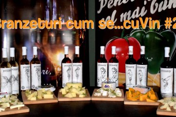 Crama Dobra Wine - Pogany