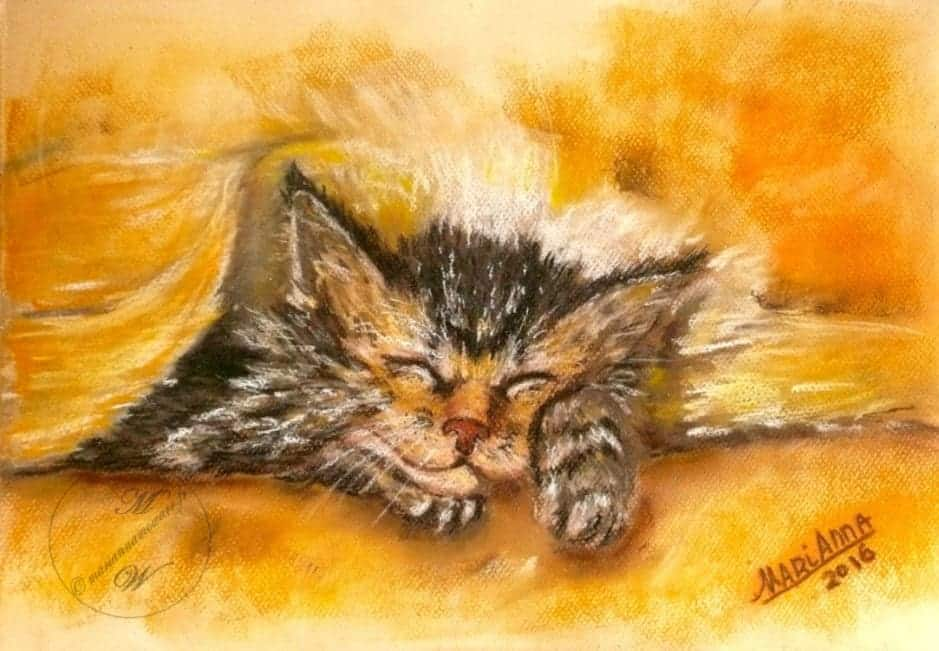 Sleepy Kitten, pastel on color paper by © MariAnna MO Warr