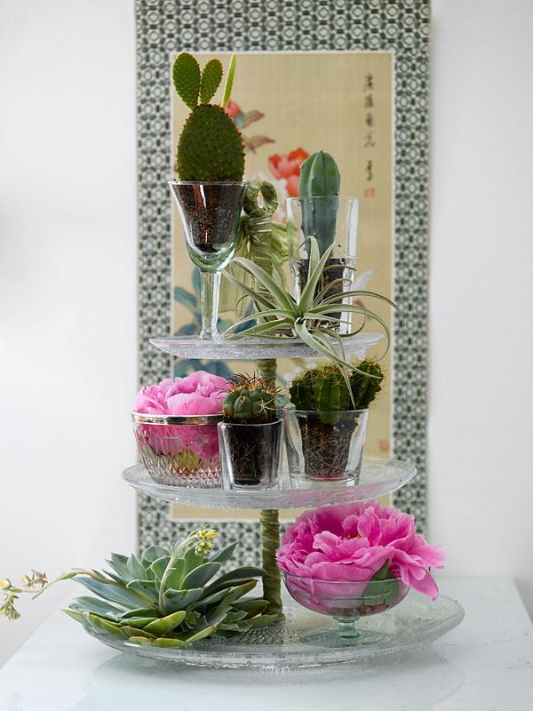 INTERIØRTIPS - Sett planter på et stettefat