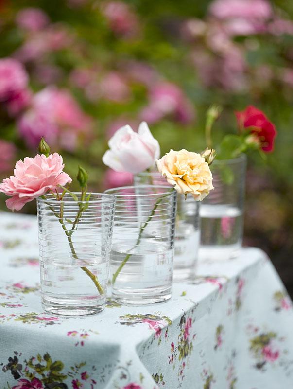 En rose i et glass...