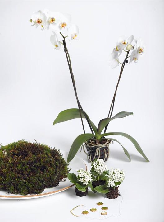 Ingeniørfruen lager blomsterdekorasjon 1
