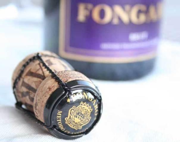 Ingeniørfruens vintips - økologisk musserende Fongaro 3